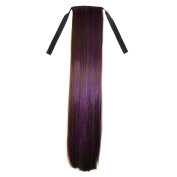 Abwin Bundled Long Straight Ponytail / Dark Brown and Violet