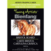 Bienfang Young Artists Trading Cards, Bristol Board, 20 sheets by Bienfang