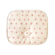The Naomiitou Naomi Ito sweat take pillow coral 9532
