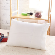 LILYSILK Baby Toddler Pillowcase Pure Mulberry Silk Soft 19 Momme Pillow Cover for Baby 1pc 12x16 Ivory