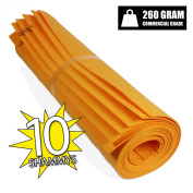 The Newest Original German Shammy - Commercial Grade 260gm Drying Chamois (10, Orange