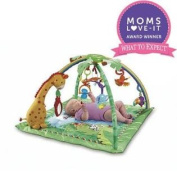 FisherPrice Rainforest Melodies Lights Deluxe Gym