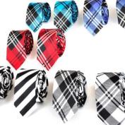 Wholesale Lot Mens 10 Skinny Neck Tie New Necktie Plaid Neckties