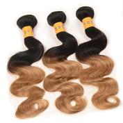 YanT Ombre Hair 6A Grade Brazilian Human Hair Body Wave Human Hair Weave 3 Bundles 30cm T1b/27 Colour Pack of 3