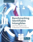 Benchmarking Identifiable Intangibles and Their Useful Lives in Business Combinations, Second Edition