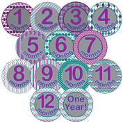 Monthly Belly Stickers for Baby Girl - Month 1-12 + Bonus One Year Sticker - 13 Pre-cut Vinyl Sticker Set - Perfect Shower Gift
