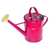 English Garden Haws Traditional 'Peter Rabbit' 8.7l Outdoor Metal Watering Can