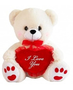 plush white animated teddy bear 30cm with red message pillow He lights up and says I love you. perfect for the special one in your life