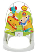 Fisher Price Fun n Fold Bouncer