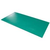 (Price/Each)Airex 32-1230G Airex Exercise Mat - Hercules - Green, 200cm X 100cm X 2.5cm