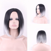 TLT New Popular Short Straight BOB Sexy . Heat Resistant Synthetic Gradual change Hair Wig +A Free Wig CAP for Women Natural As Real Hair(Black with White)BU046E