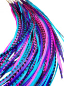 Feather Hair Extensions, 100% Real Rooster Feathers, Long Pink, Purple, Blue Colours, 20 Feathers with Bonus FREE Beads and Loop Tool Kit