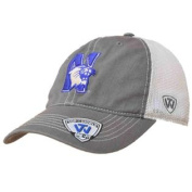 Northwestern Wildcats TOW Grey Two Tone Putty Mesh Flexfit Slouch Hat Cap