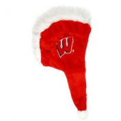 Wisconsin Badgers 2012 Mohawk Dangle Hat