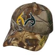 Realtree Logo Baylor University Bears Camo Hat