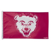 University of Montana 3x5 Vintage Style Banner Flag