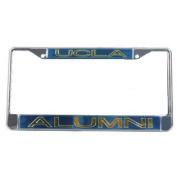 Ucla Bruins Metal Alumni Inlaid Acrylic Licence Plate Frame - Large Alumni