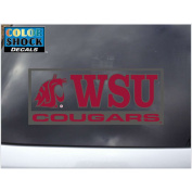 Washington State Cougars Decal - Mascot W/ Wsu Over Cougars