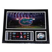 Florida Gators RTF The Road to Omaha 2012 College World Series Suede Print 16X20