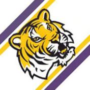NCAA Louisiana State Tigers Prepasted Wallpaper Border Roll