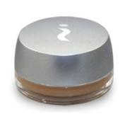 Skinn Cosmetics Plasma Concealer SPF 8