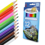 Thornton's Art Supply 50 Piece Premier Soft Core Artist Grade High Quality Coloured Pencil Set, Assorted Colours