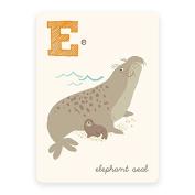 Sea Urchin Studio Wall Decor, E/Elephant Seal