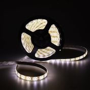 elcPark 5m/16ft Waterproof IP65 Daylight/Nature White SMD5630 LED Flexible Strip Light/Rope Lights with Adhensive 300LED 60LED/M DC 12V 5A 60W