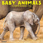 Baby Animals 2017 Wall Calendar