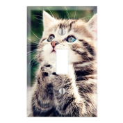 Cute Kitty Praying Decorative Wall Plate Cover