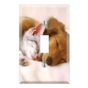 Puppy Kitty Cuddle Decorative Wall Plate Cover