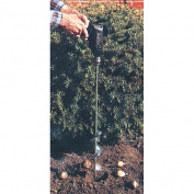 Jisco Bulb Planter 5.1cm - 1.9cm x 60cm