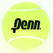 Mini Jumbo Tennis Ball
