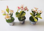 Dollhouse Flower Miniature in Pots Set Made of Artificial Clay Realistic it Very Cute.