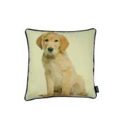 Home Living Room Decorative Golden Retreiver Pup 16x16 Pillow
