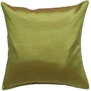 Avarada Solid Throw Pillow Cover Decorative Sofa Couch Cushion Cover Zippered 24x24 Inch (60x60 cm) Green
