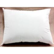 Bicor Perfect Dreams Extra Firm Pillow, Queen 20x30
