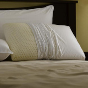 Restful Nights Even Form Latex Pillow Standard-Size Synthetic Pillows
