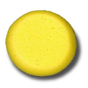 Synthetic Silk Sponges Are Clean, Absorbent and Inexpensive