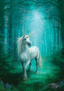 (Price/pack)AN34 Forest Unicorn Card - 6 Pack