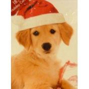 Paper Magic Cute Santa Claus Yellow Lab Puppy Dog Christmas Cards