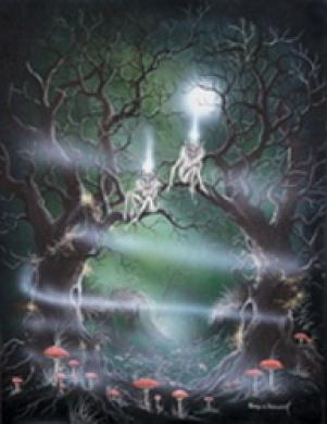 (Price/pack)Tree Spirits Card