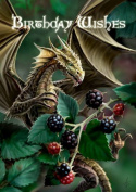 (Price/Pack)Blackberry Dragon Card