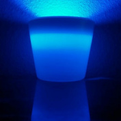 Glow Vase - White Vase w/Blue Light