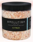 Evolution Salt Bath Salt Citrus