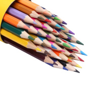 Coloured Pencil Set Soft Lead with Cylinder Box Environmentally Friendly
