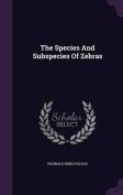 The Species and Subspecies of Zebras