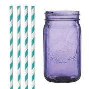 Dress My Cupcake DMC35161 Purple Vintage Jardin Mason Jar with Aqua Striped Straws, 950ml