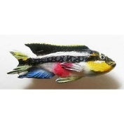 Painted ~ African Cichlid ~ Refrigerator Magnet ~ FP108AM