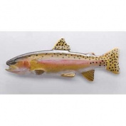 Painted ~ Alvord Cutthroat Trout ~ Refrigerator Magnet ~ FP014UM